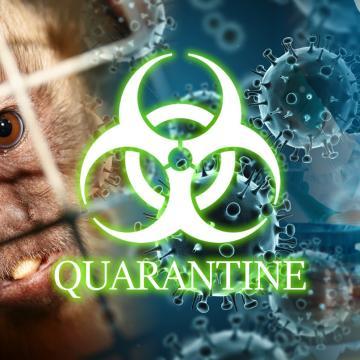 Quarantine - Houston - 01